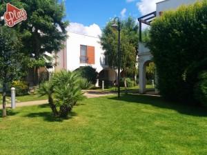 Blu Salento, Porto Cesareo, Puglia017