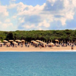 nicotera beach village