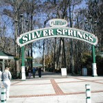 SilverSprings 150x150 Fly and Drive Florida + Miami