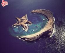 L'isola che non c 'e'