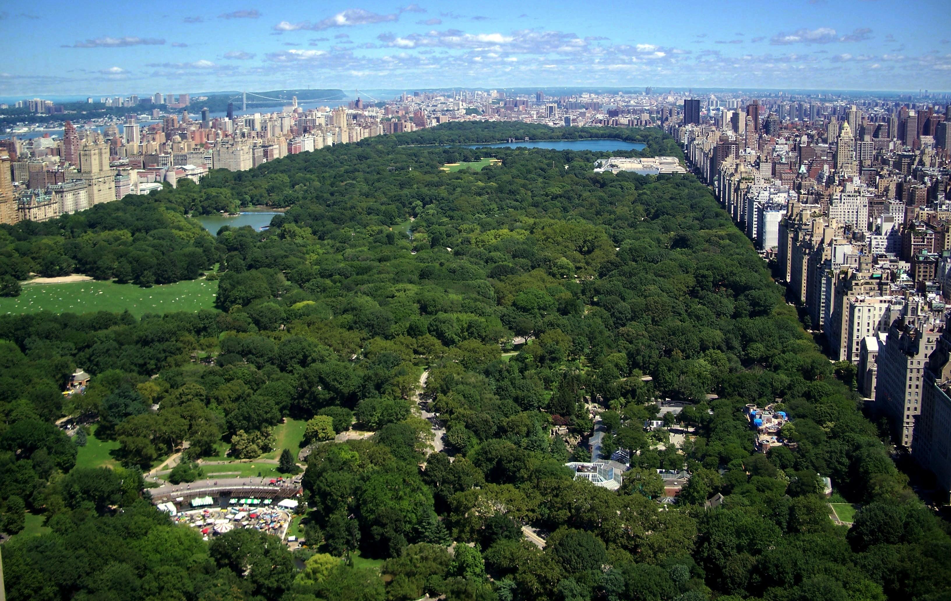 central park New York la città dalle mille luci