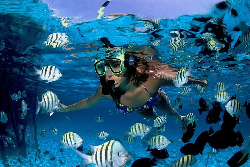 cheap riviera maya vacation deal Messico dai Maya al mare caraibico