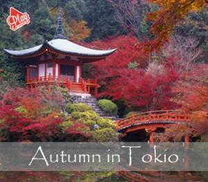 autumn in Tokio