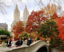 L'autunno colora di magia le città