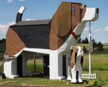B&B per gli amanti dei cani Dog Bark Park Inn