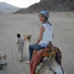 389579 10150943141992495 793847410 n 150x150 Amphoras **** Sharm El Sheikh   Recensione Ufficiale