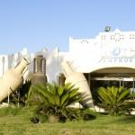 Amphoras sharm el sheikh