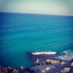marsa alam66 150x150 Blue Reef Resort **** Marsa Alam   Recensione Ufficiale
