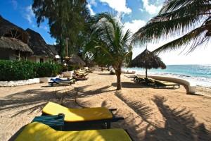 57003_Resort_Coral_Key_Beach_Resort_Malindi_Eden_Special_z_