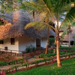 57310_Resort_Temple_Point_Watamu_Eden_Special_z_