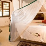 57315_Resort_Temple_Point_Watamu_Eden_Special_z_