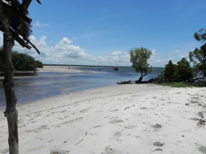57331_Resort_Temple_Point_Watamu_Eden_Special_z_