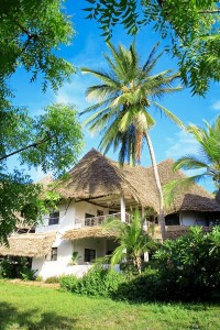 57490_Resort_Temple_Point_Watamu_Eden_Special_z_