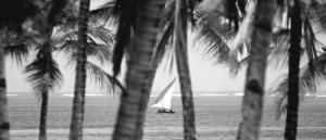 89758_Resort_Diamonds_Dream_of_Africa_Malindi_Eden_Special_z_