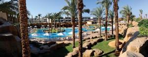 Oasis Reef Sharm