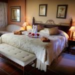 33223_Resort_Occidental_Grand_Punta_Cana___Royal_Club_Punta_Cana_Eden_Special_z_