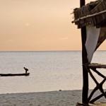 3347_Villaggio_Kendwa_Beach_Resort_Kendwa_Eden_Village_z_