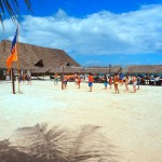 91368_Villaggio_Kendwa_Beach_Resort_Kendwa_Eden_Village_z_