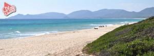 Marina Rey Beach Resort Costa Rei Sardegna