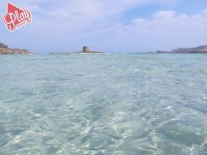Spiaggia La Pelosa Stintino Sardegna Rocca Ruja